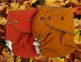 *Autumn Colors* Hand-dyed Organic Cotton QD Diapers (2-Pack)